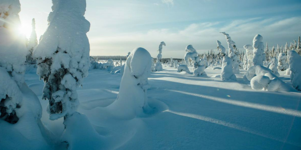 the purest nature and snowy landscape in Syöte fell area