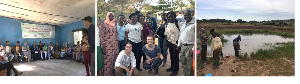 From left to right: Workshop session in Kemise, Ethiopia; Imperial College London staff and students, NIMR staff and AfH staff in Kigongo, Tanzania; Team collecting snail samples from a site in Mwakalima