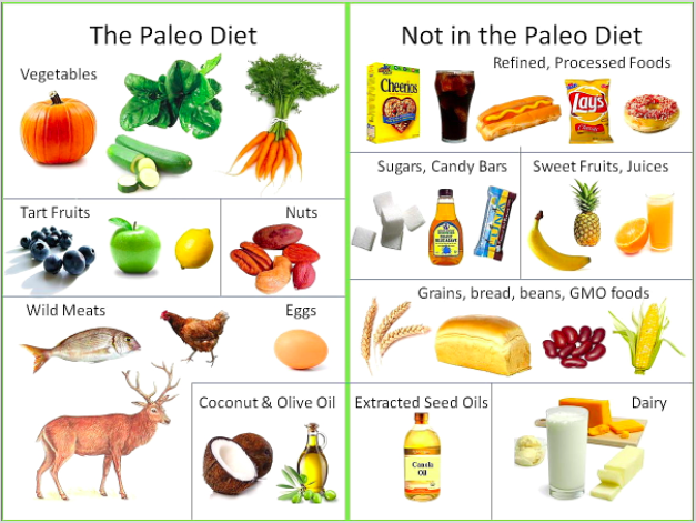 paleo what to eat what not to eat diagram