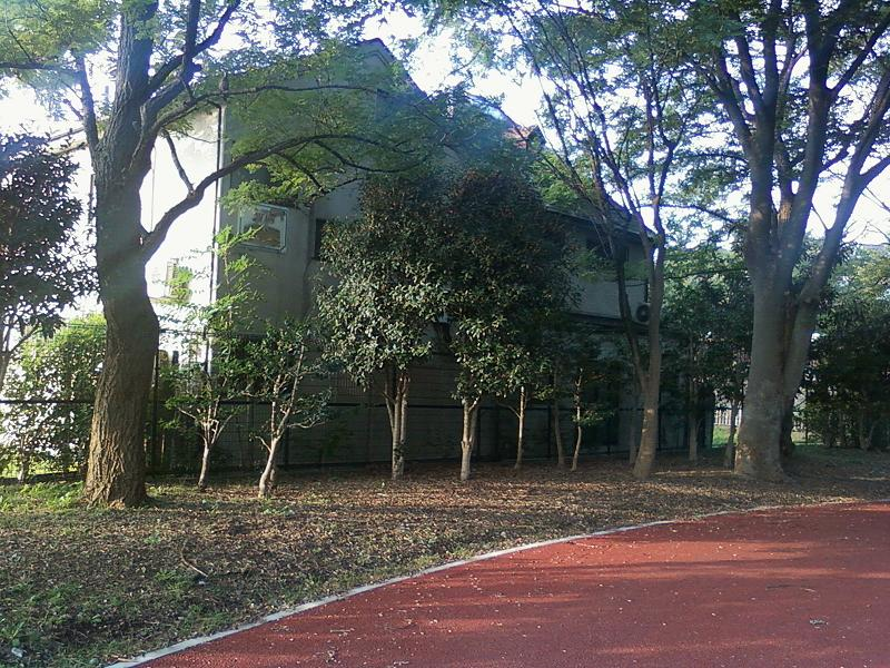 The Miyazawa home, from the angle of the park located behind it