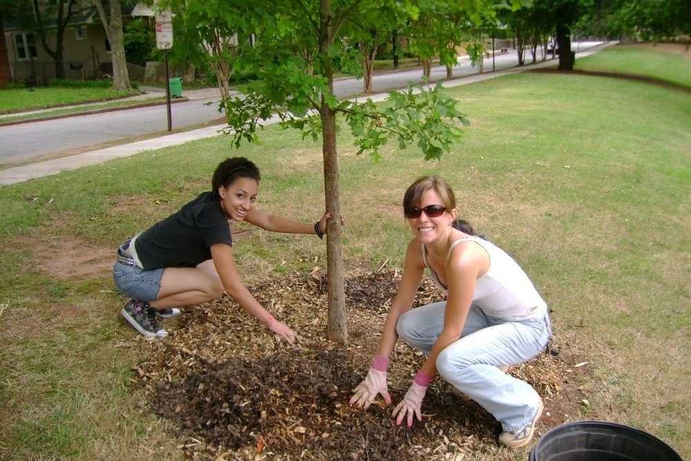 The Parntership with Hands On Atlanta helped us recruit extra volunteers for our weekday plant guardians program. Hands On Atlanta provides excellent technical support! - Susan Pierce Cunningham, Volunteer Coordinator - Trees Atlanta