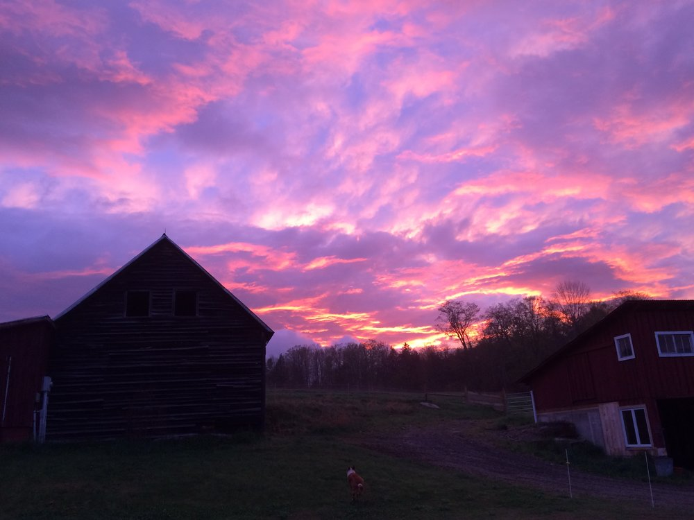 sunset 1-001.JPG