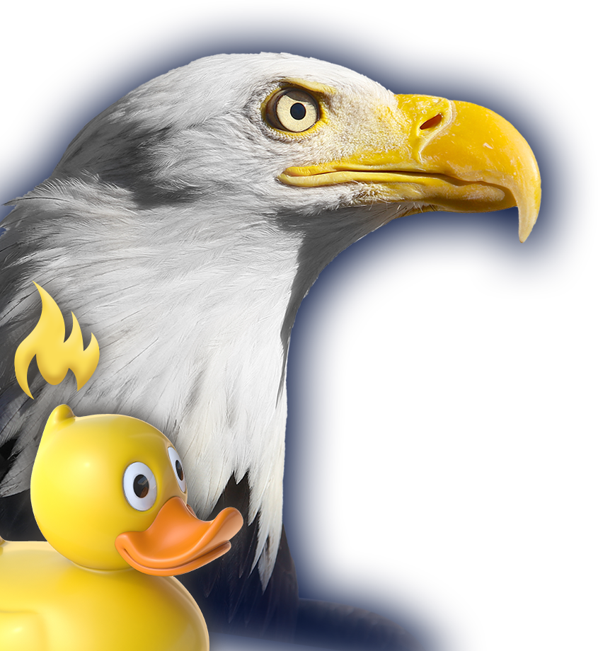 eagle-duck.png