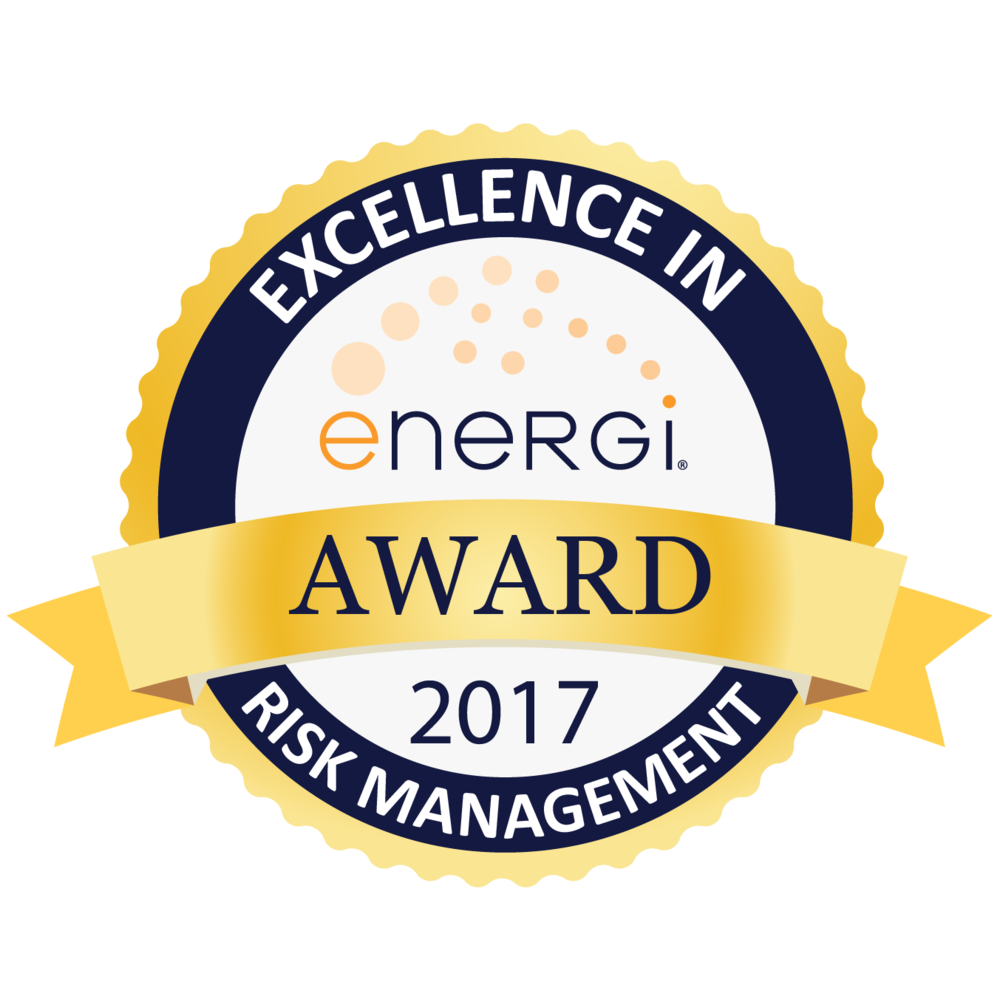 2017 Excellence in Risk Management Award Seal.png