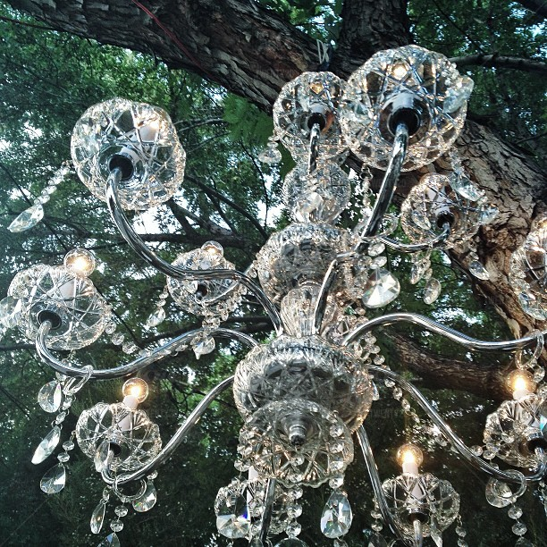 CHANDELIERS TWINKLINGIN OLD SOUTHERN TREES -