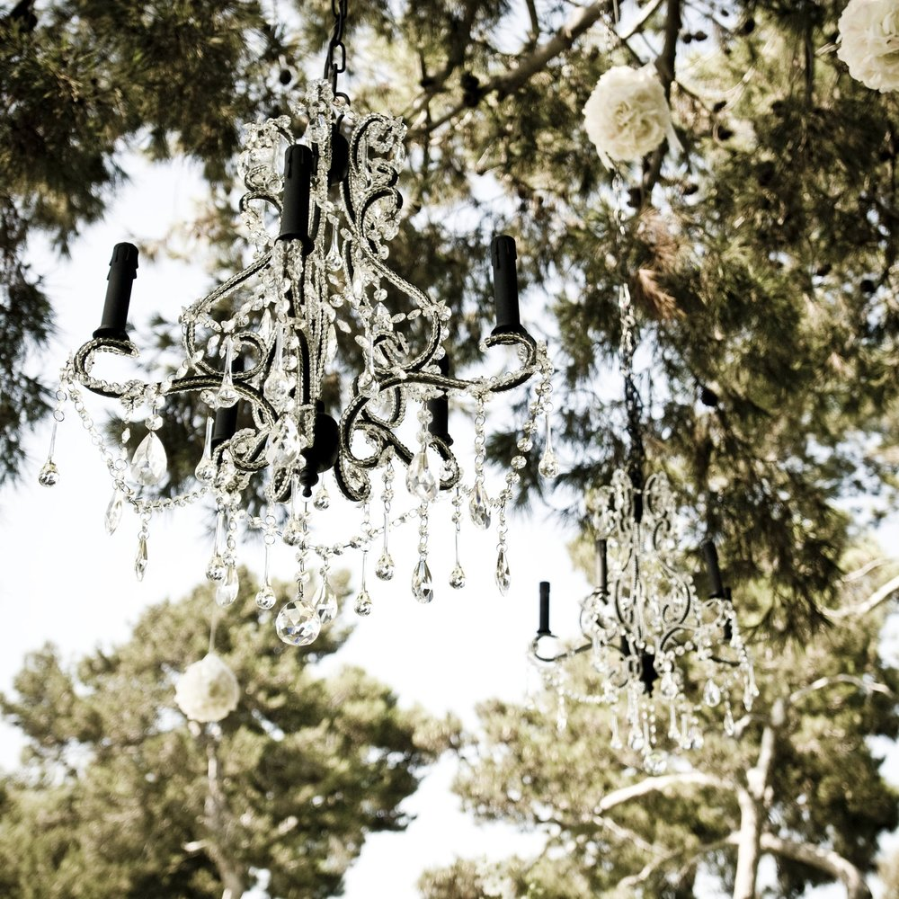 Chandeliers in Trees