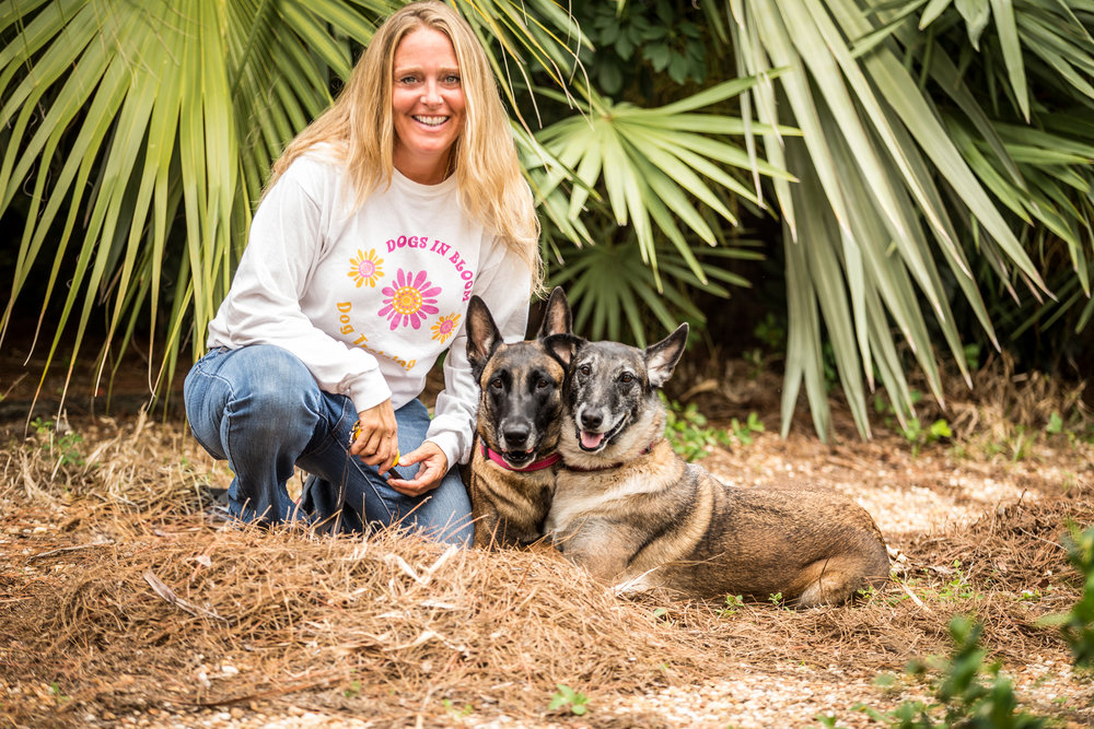 Palm Beach Dog Training. Sit