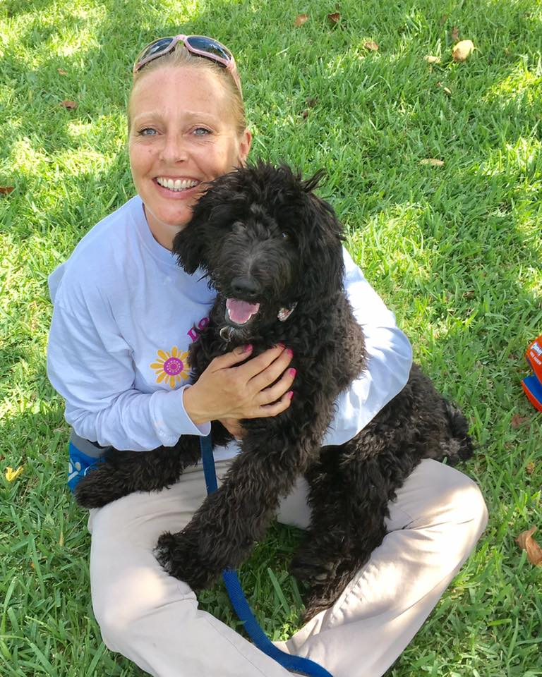 Palm Beach Dog Training. Poodle