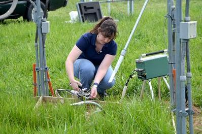 Former UK graduate student Marie Bourguignon measures the amount of photosynthesis occurring on tall fescue.  PHOTO: Katie Pratt, UK Agricultural Communications