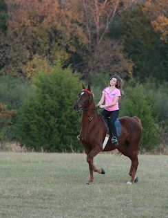 Future equine vet Sierra Newsome takes her horse on a trail ride.