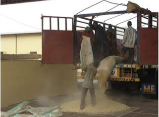 Unloading corn from bags into a dump pit at one of the government silo facilities in Akure, Nigeria, where McNeill's team had their second training workshop in March 2010. Photo provided by Sam McNeill