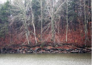 Many of Kentucky's waterways are still at below normal levels due to the dry fall.