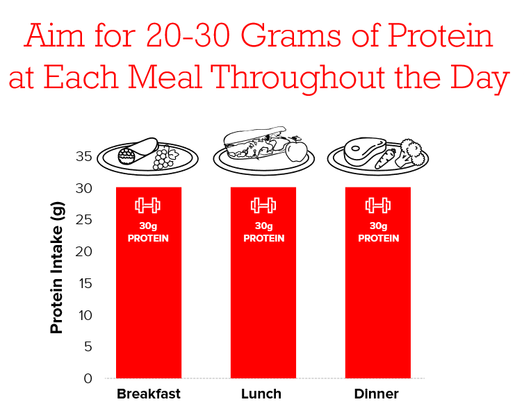 protein-throughout-the-day.png