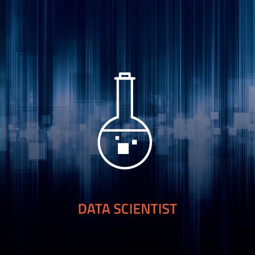 Mareana Careers page graphics_data scientist.jpg
