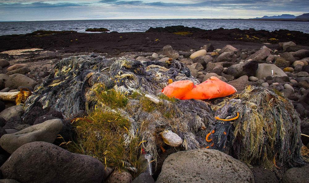 Seaweed plastics 2 ©Ágúst Rúnarsson-.jpg