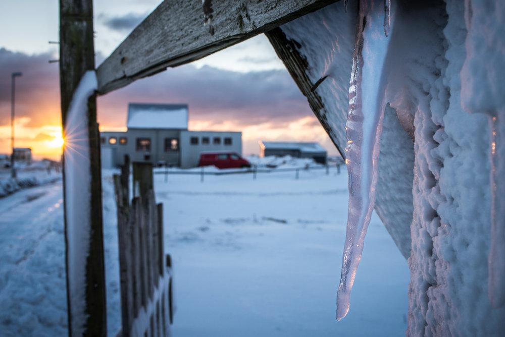 Reykjanes@Hans Vera -1113.jpg