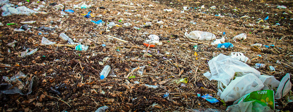 Were these products made of bacterially produced plastic, they would decompose instead of floating around in nature forevermore. JONAA©John Cunningham