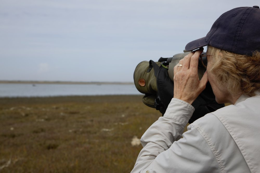 Birding at Bandon Marsh National Wildlife Refuge. Photo by Lila Bowen