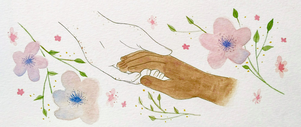 Illustrated by  Clara Gallay