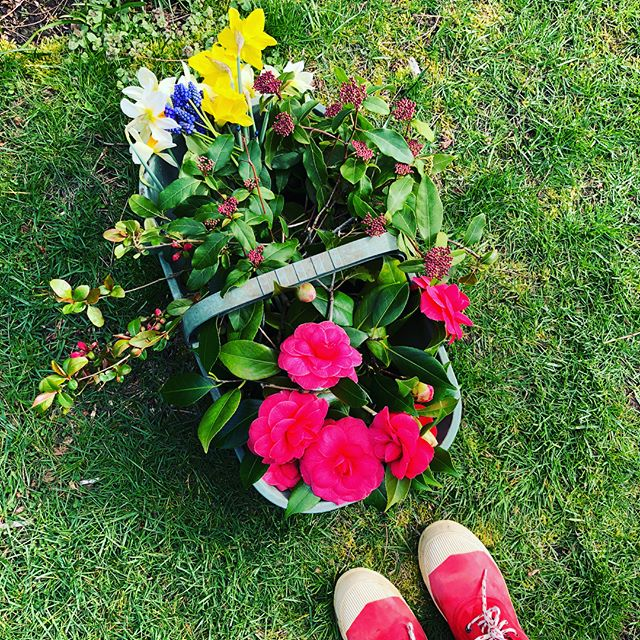 Picking flowers from the garden for the Easter table!  #itsspringhere #mayneisland #idontwanttoleave