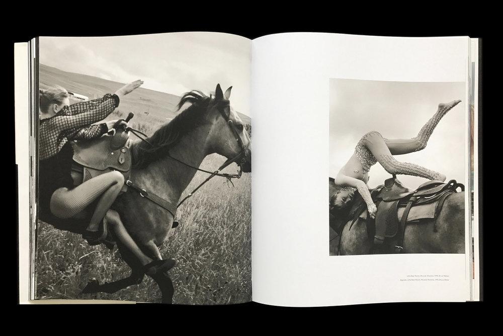 KK-Horse-11.jpg