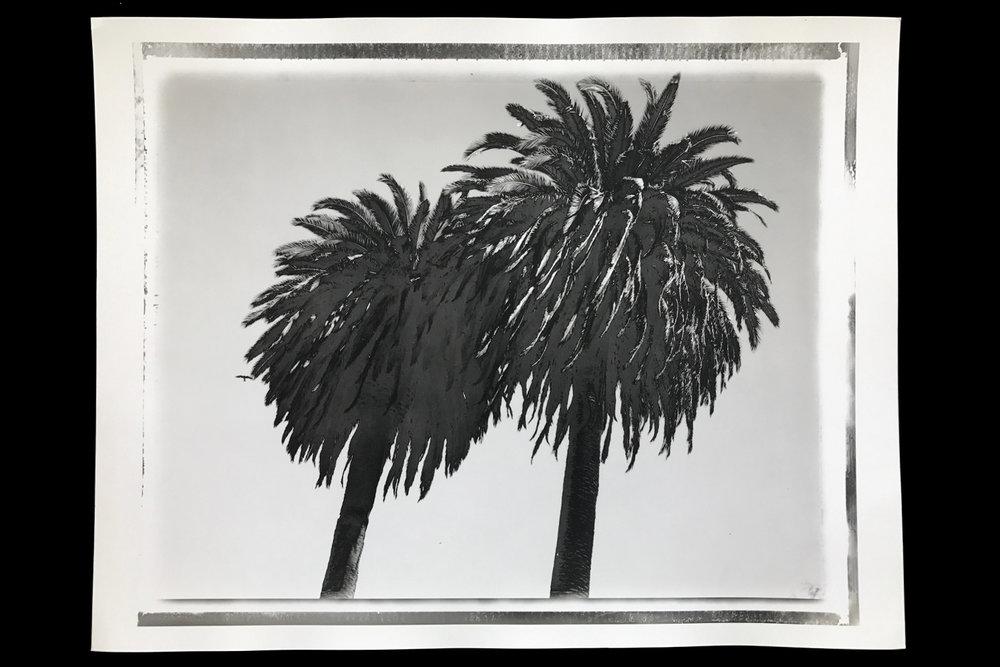 KK-Polaroids-10.jpg
