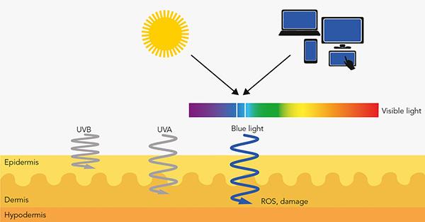 InfraGuard_Damaging_Effect_of_Blue_Light_on_Skin.jpg