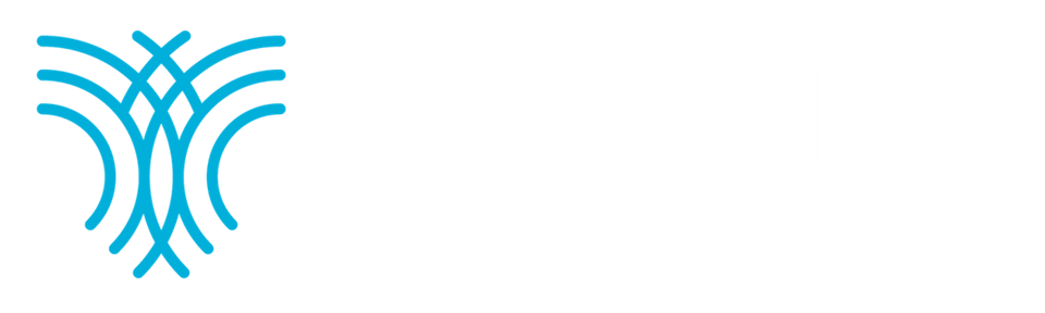 CHYSALIS INSTITUTE