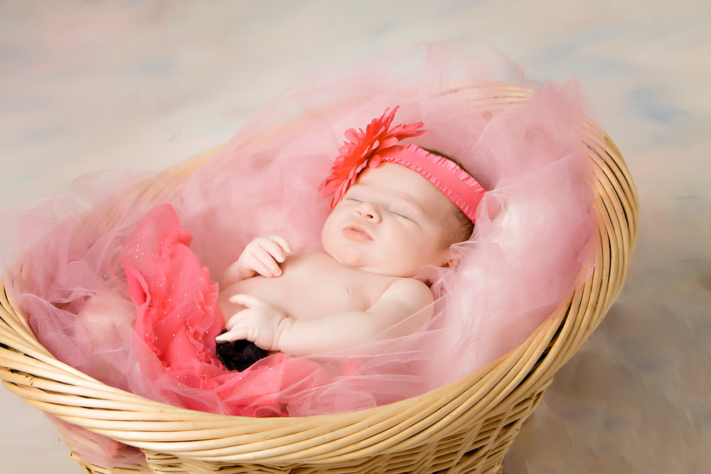 portrait of a newborn in a basket with pick tooling