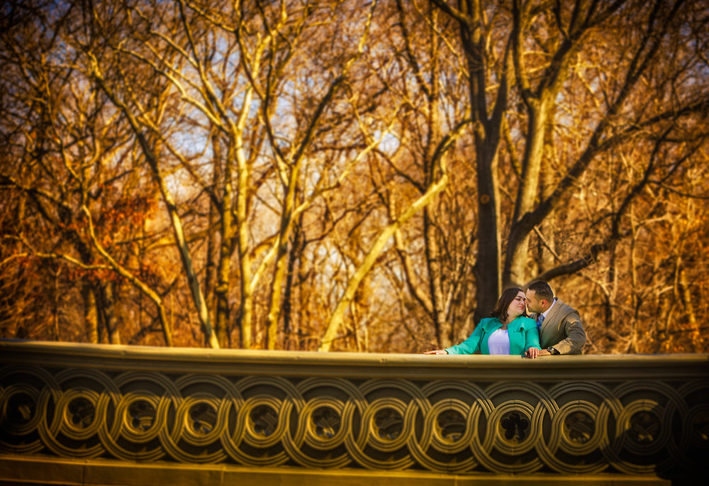 Engagement Session on a bridge in central park NYC