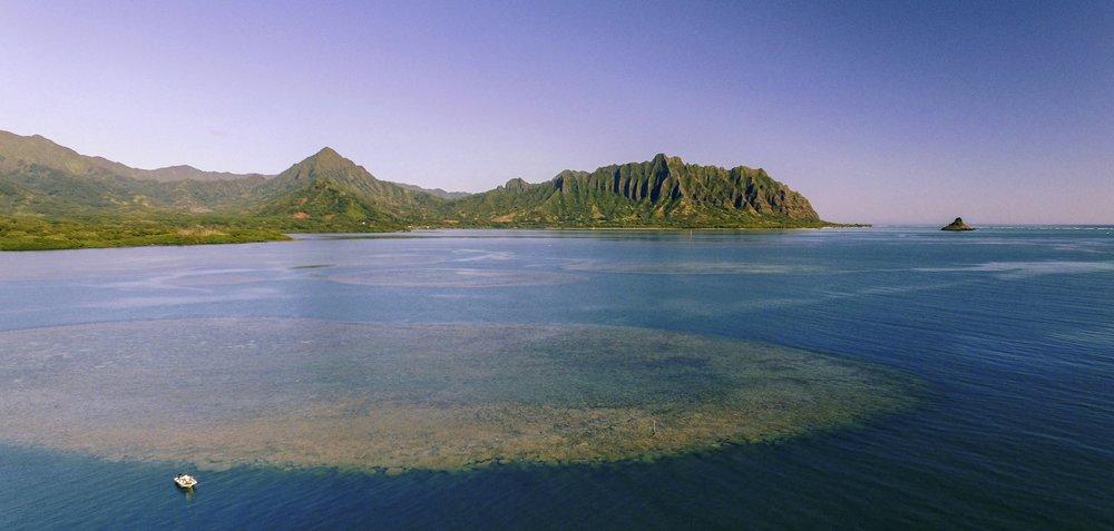 Kaneohe Bay: Joshua Levy- UH Manoa/HIMB