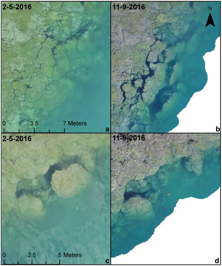 UAS imagery of two reef areas collected 9 months apart. Location 1: first row. Location 2: second row.
