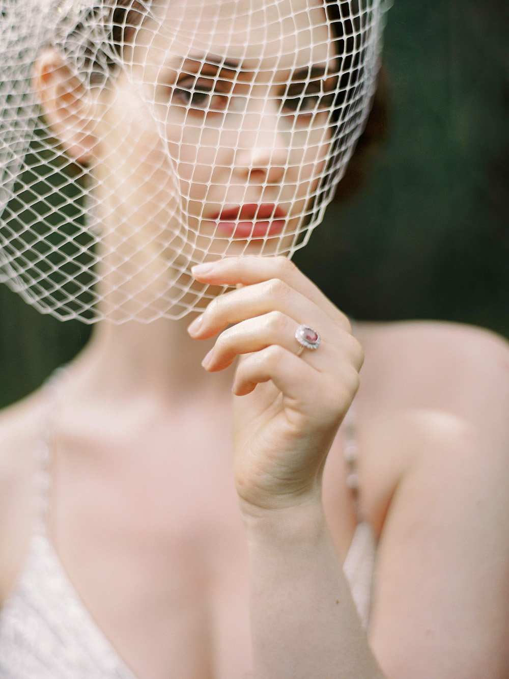 Vintage-birdcage-veil