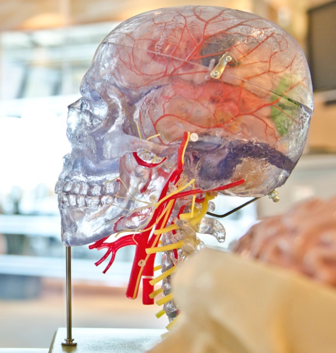 Mindset teori | Bliv bevidst om dine handlinger | Lev dit liv bevidst
