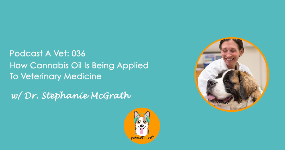 PAV-036-Dr-Stephanie-McGrath.jpg