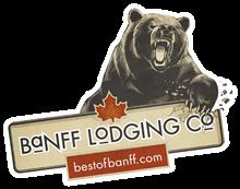 logo_bear_v2.png