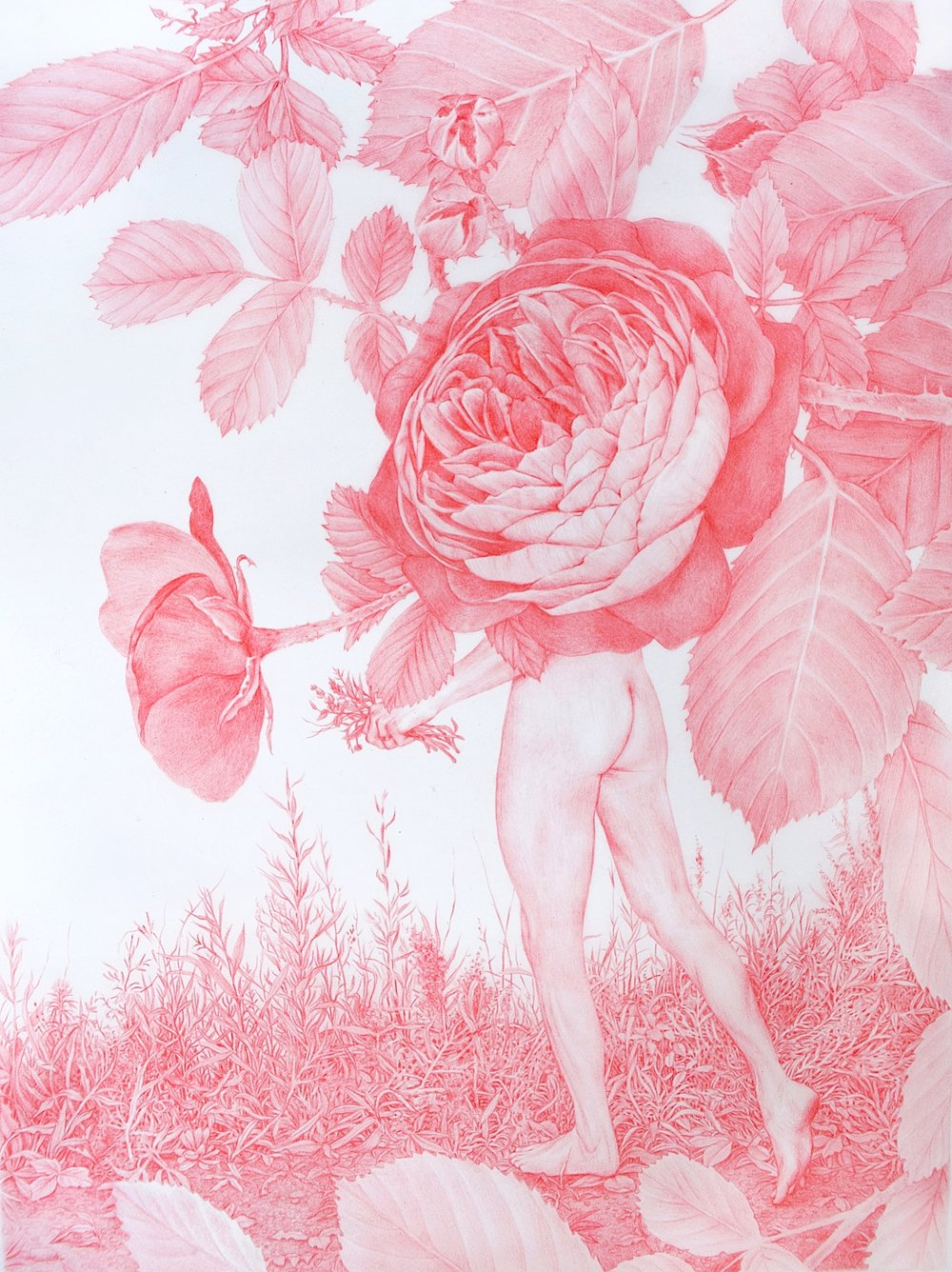"Zachari Logan,  Naked in The Roses,  2018, red pencil on mylar, 11"" x 9"" (28 x 23 cm)"