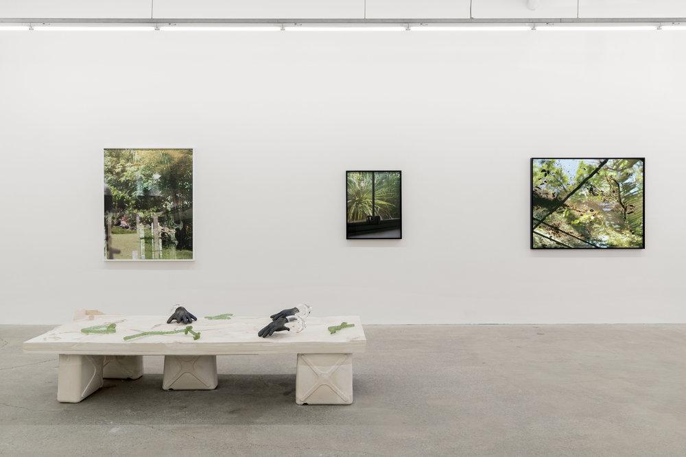 GalerieNicolasRobertLornaBauerHiRes (2 of 32).jpg