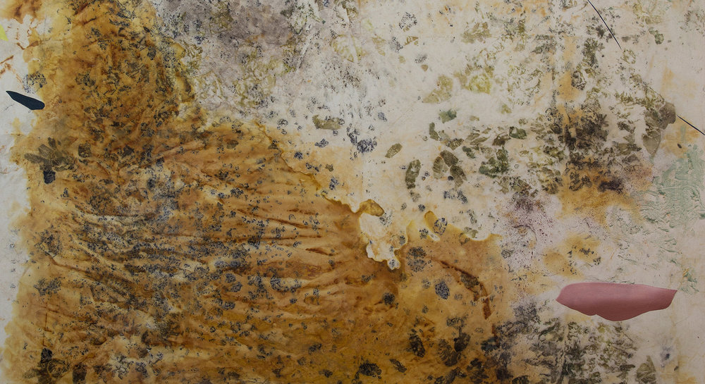 Promo 16x9_Gillian King_Sinister Dunes_Cold Wax Medium, Oil, Raw Pigments, Rust Sediments, and Various Plant Materials on Canvas_6x5 ft_2019 copy.jpg