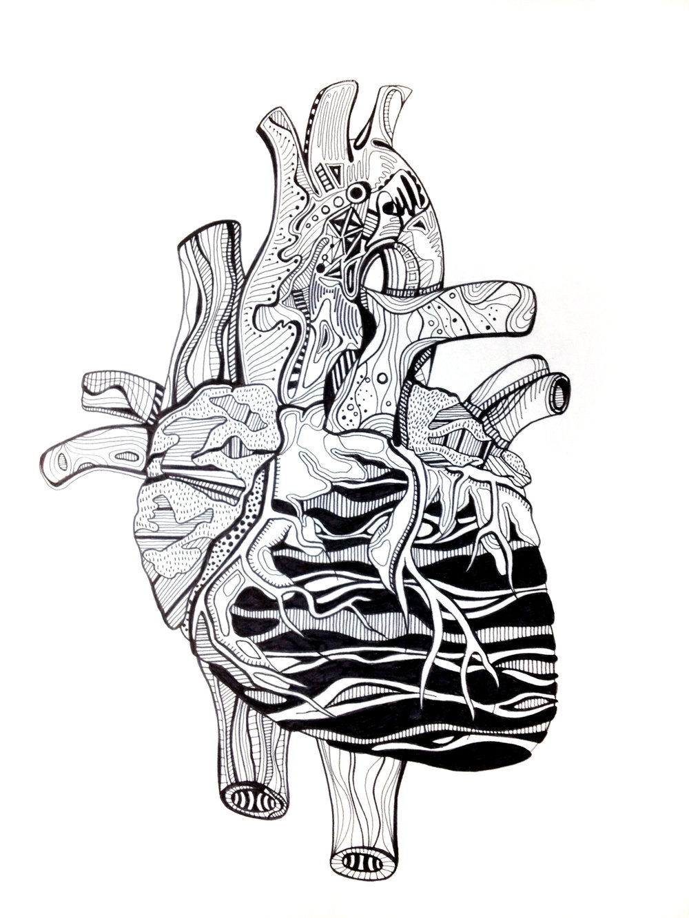 heart_illustration.jpg