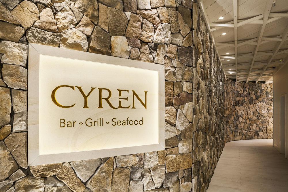 CYREN-370.jpg