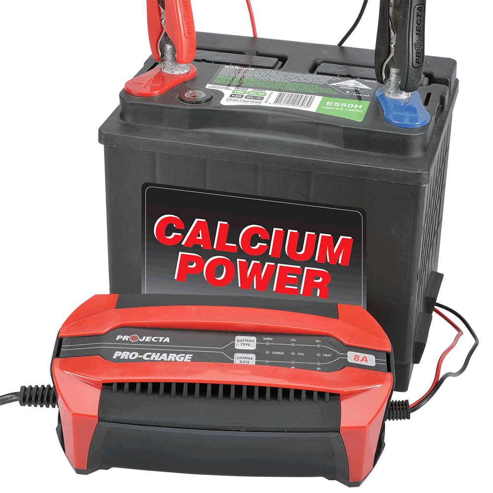 Calcium mode  Adjusts the charging profile to suit calcium batteries for complete charging.
