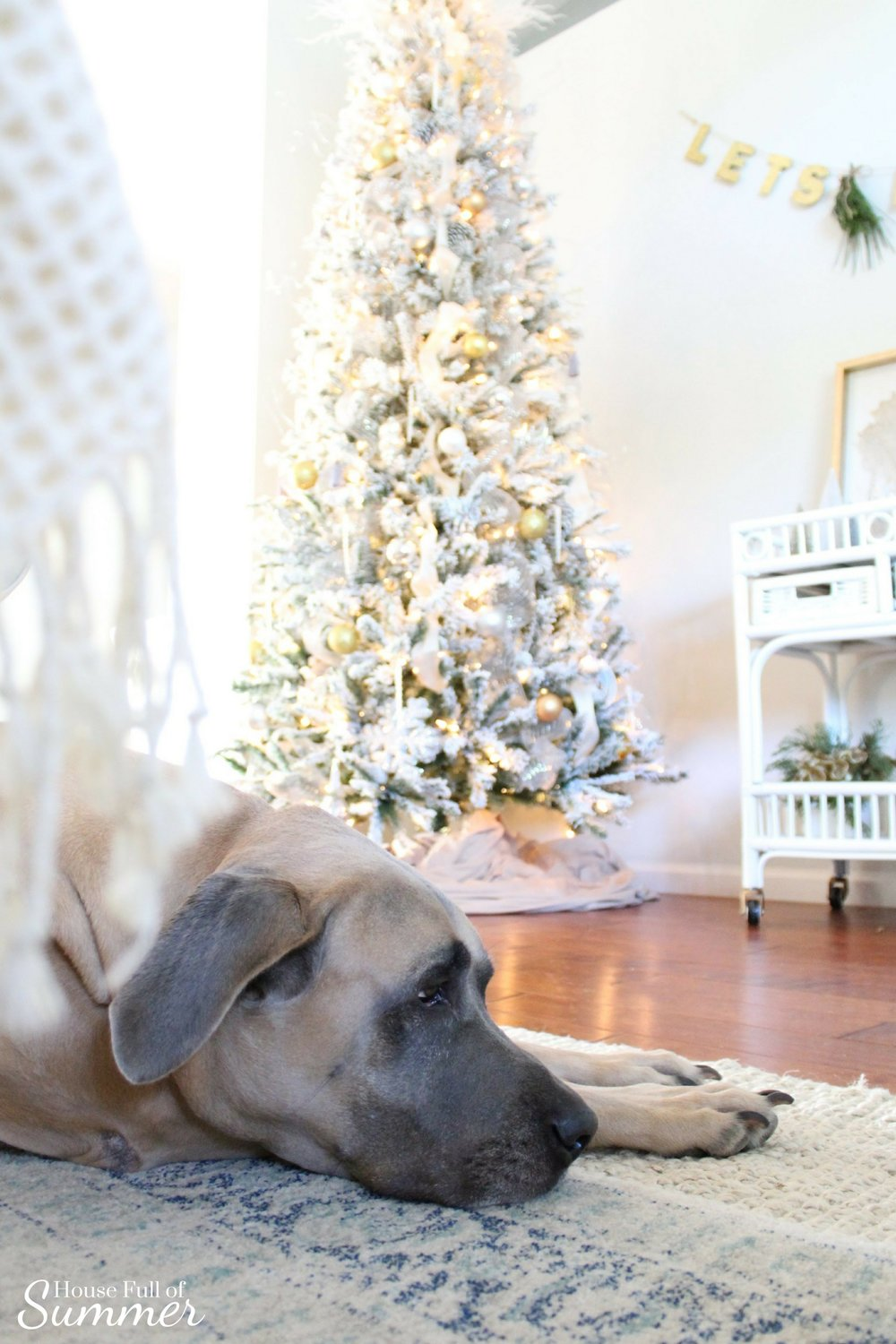 Christmas Home Tour | House Full of Summer blog hop - Cheerful Christmas Home Tourcoastal christmas neutral christmas decor, holiday home tour, florida christmas, dog christmas photos
