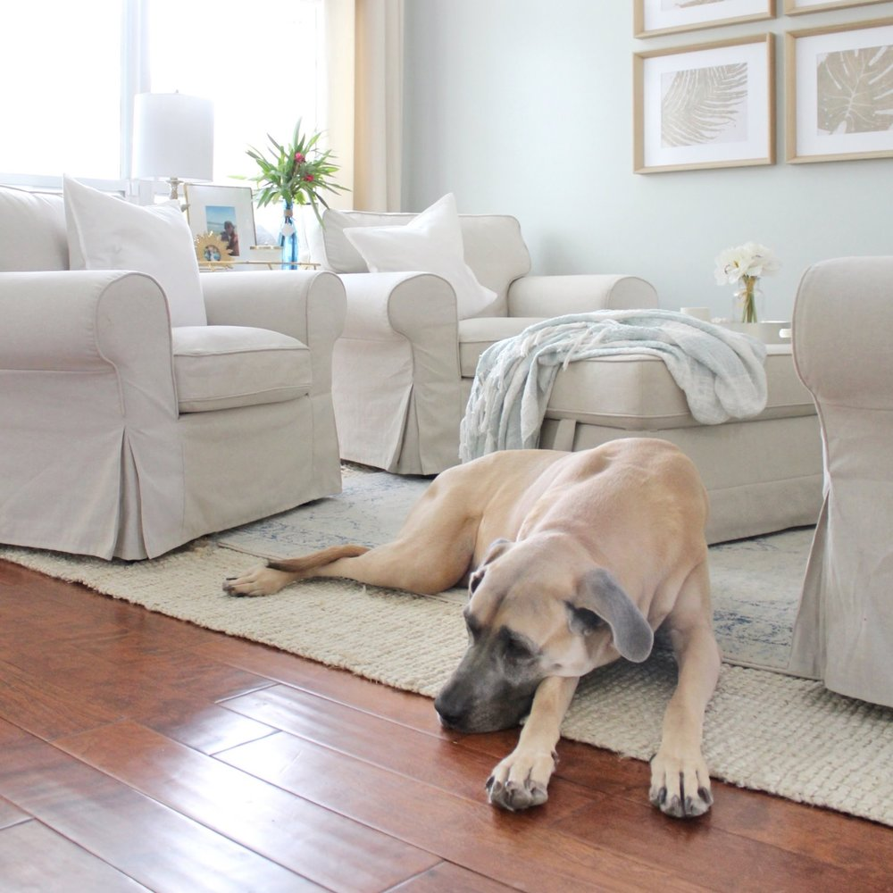 The Best Rugs for Big Dogs (and little ones, too!) — House ...