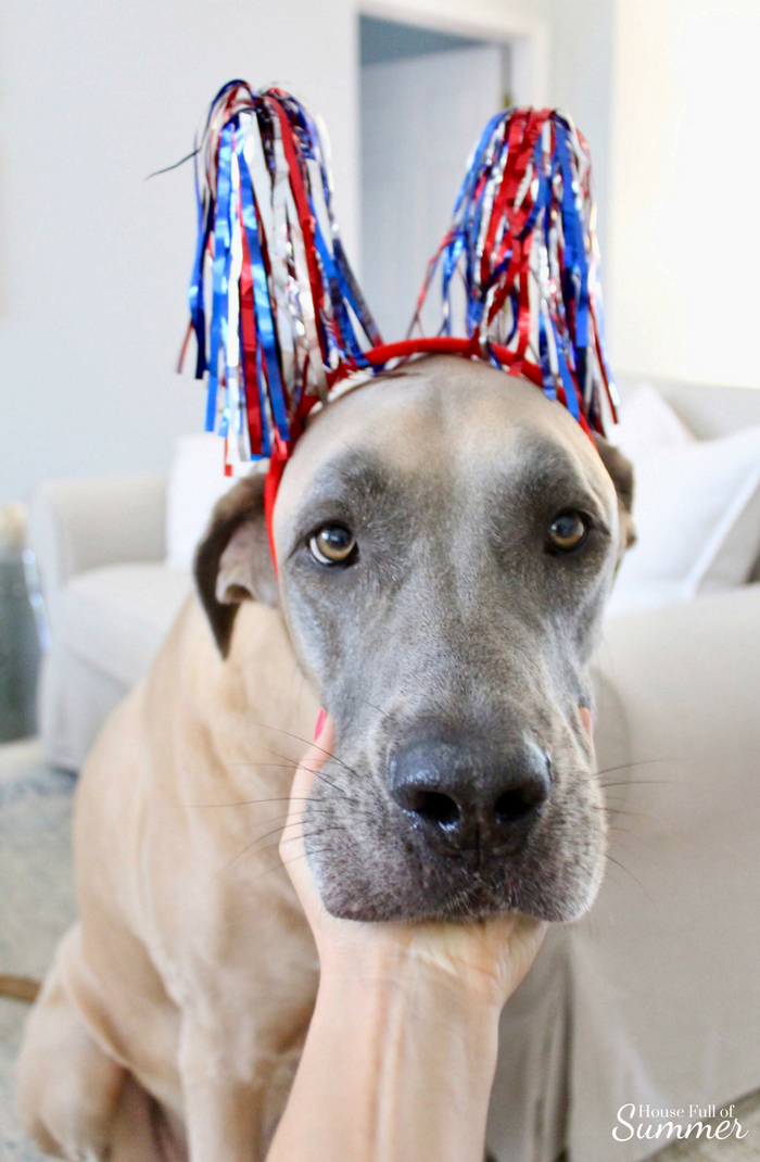 Red, White & Brew Bar Cart Decor | House Full of Summer Patriotic holiday decor, bar cart styling, coastal decor, palm beach chic, white cane bar cart, Memorial Day, Fourth of July, Labor Day, Flag Day #housefullofsummer #dogdaysofsummer great dane english mastiff