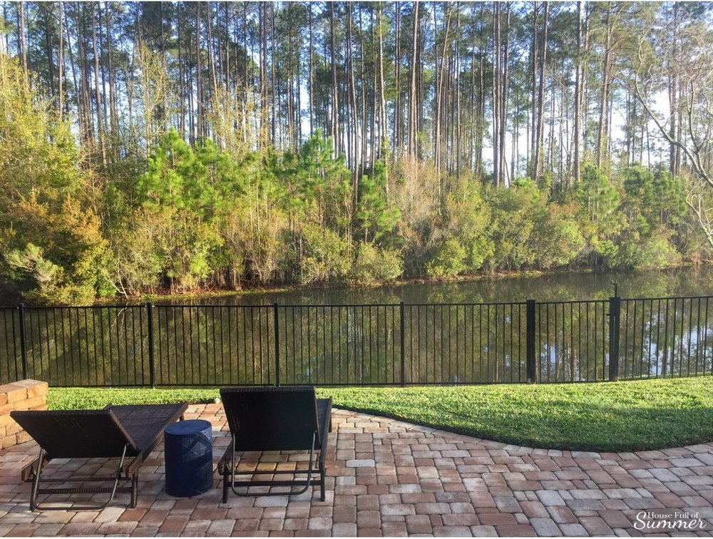 How We Turned Our Boring Backyard Into a Our Own Little Slice of Paradise | House Full of Summer backyard before and afters pool enclosure Florida home water view backyard design, coastal home, overgrown backyard, patio design, pool and pond, preserve tall pines, privacy