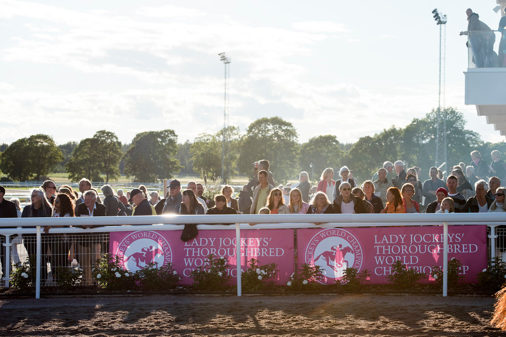 Racegoers at the parade ring at Bro Park.