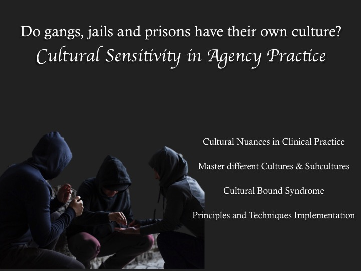 Do Gangs, Jails, and Prisons Have Their Own Culture: Cultural Sensitivity in Agency Practice