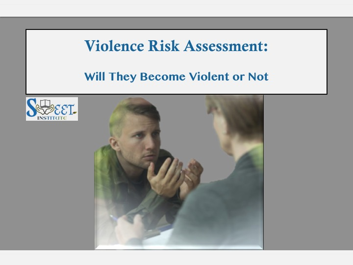 SWEET Institute Violence Risk Assessment: Will they become violent or not