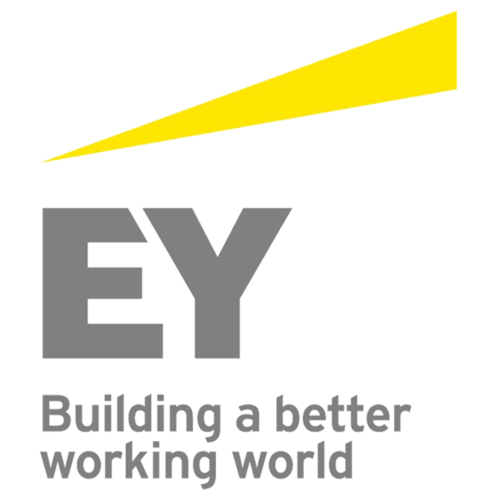 Ernst & Young - Social Entrepreneur of the Year 2012